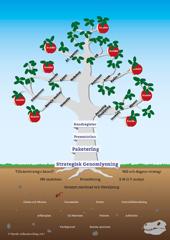 Kunskapsträdet - Vitendo Affärsutveckling